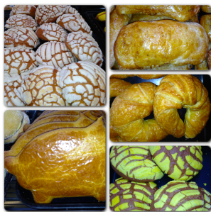 Pan Dulce: Concha, Marranito, Cuernito, Campechana