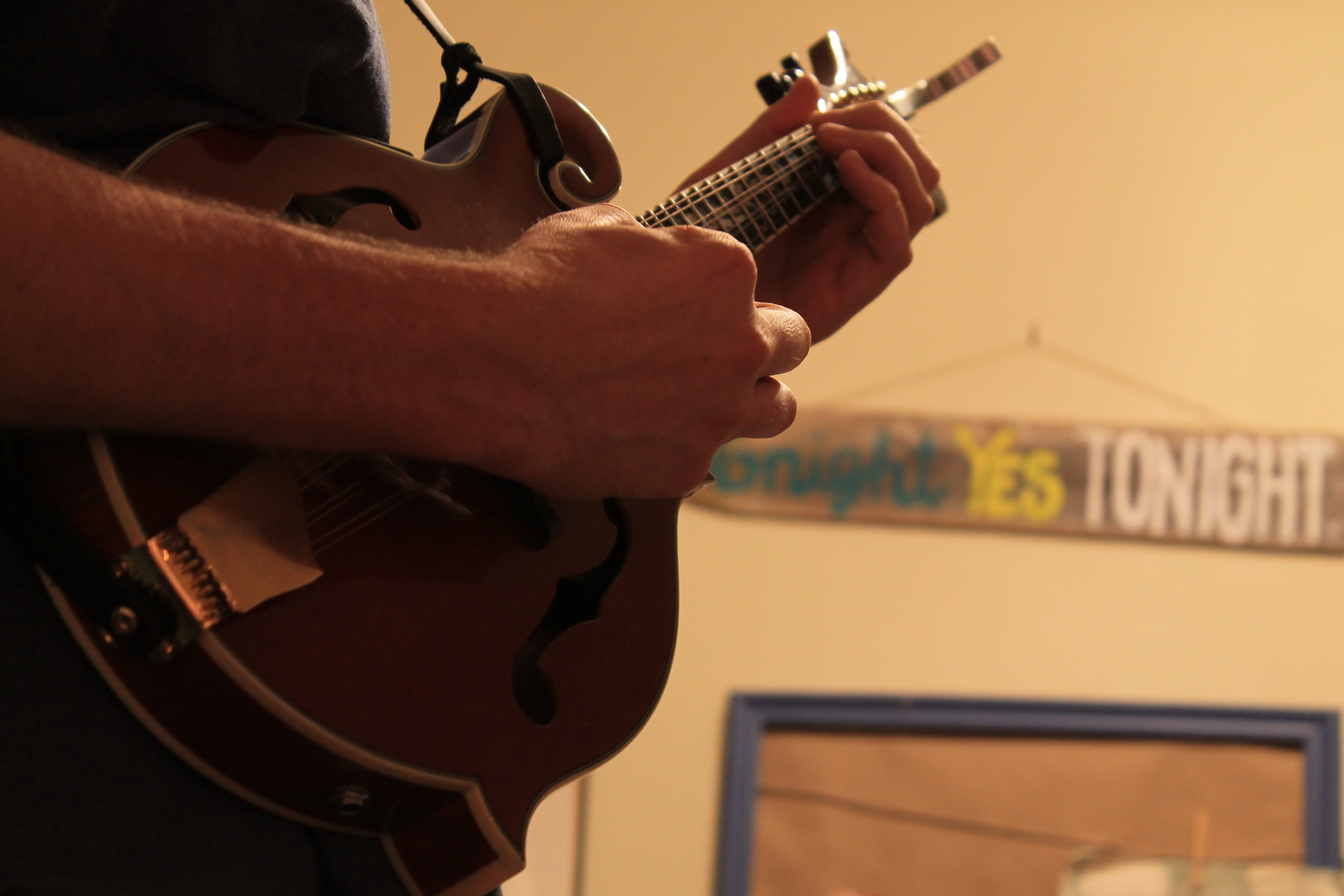 Josh plucks the mandolin, a key part in Friendly Savages' musical style.