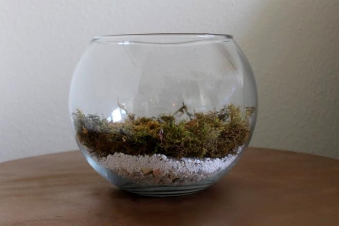 3. Add moss