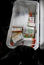 Free popsicles provided by Juiceland.
